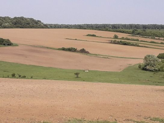 farmland for sale in Romania