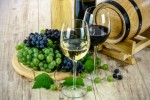 Romania Vineyard
