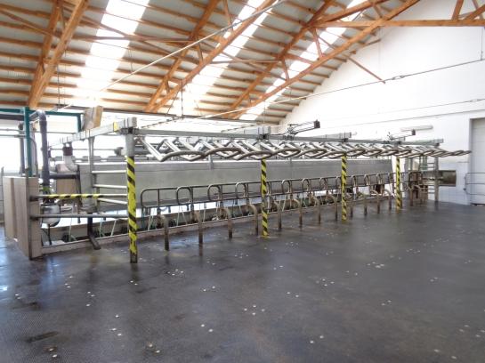 romanian livestock farm for sale